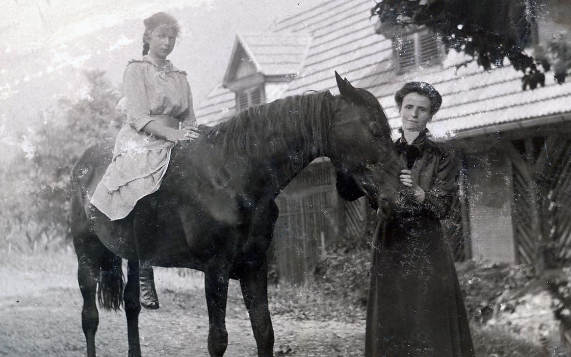 Ein Pferd für den Berg